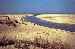 der Courant d'Huchet mäandert durch die Dünen