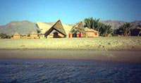 Diving Camp Nuweiba
