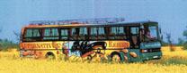 Graffitibus